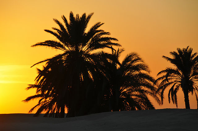 Tunézia – Karthago